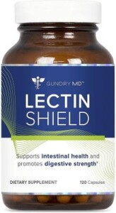 what are lectins?